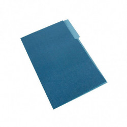 Carpeta Interior Nepaco azul marino, caja de 100 unidades