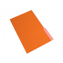 Carpeta Interior Nepaco naranja, caja de 100 unidades