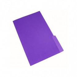 Carpeta Interior Nepaco violeta, caja de 100 unidades